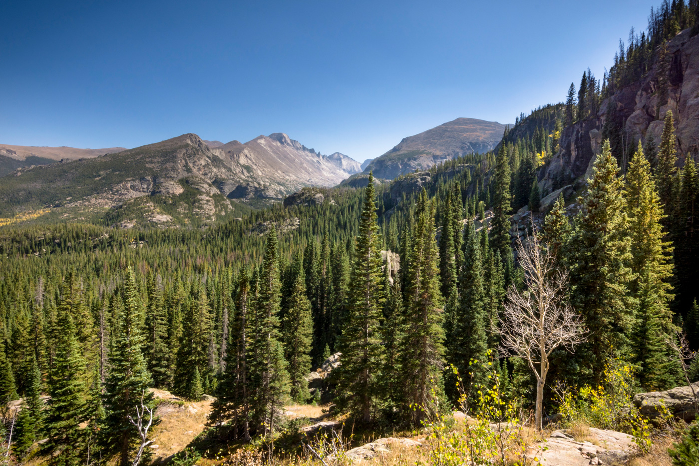 Rocky Mountain Continental Divide by Jen Schildgen