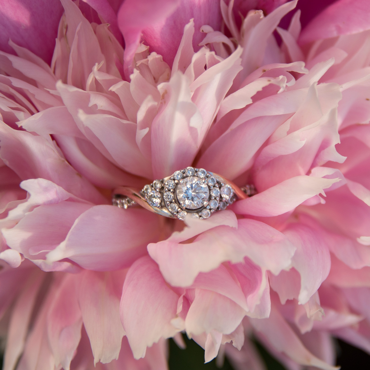 Gorgeous engagement ring with a pink peony