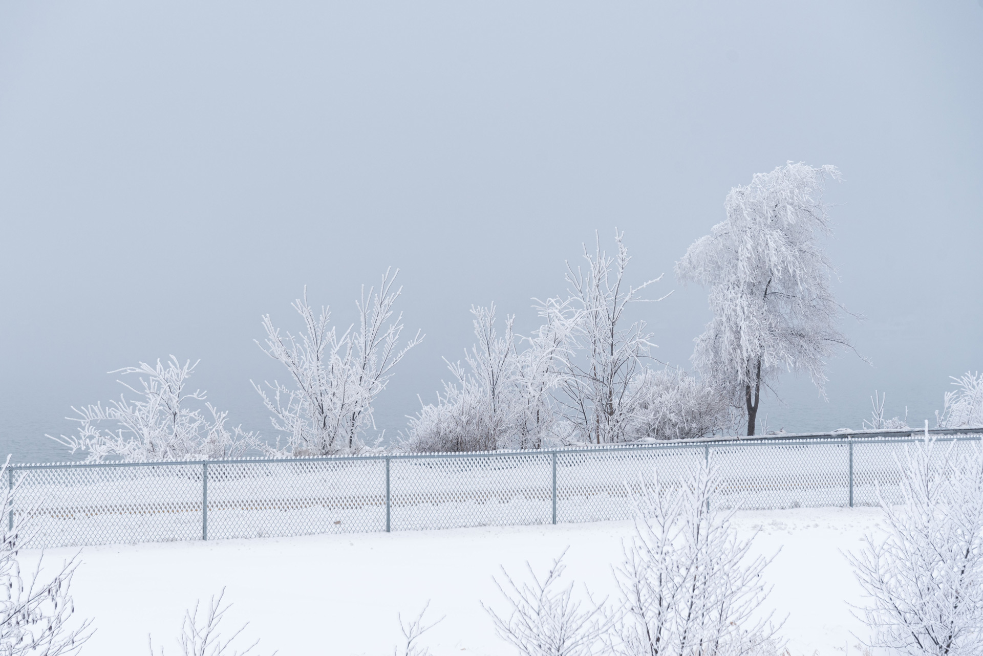 Geneva Lake covered in hoarfrost