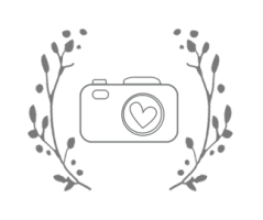 BlueVerve Studio Camera Logo